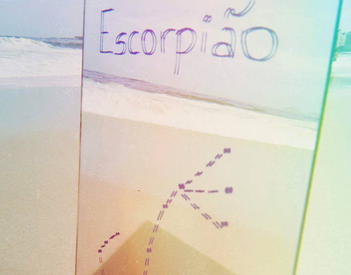 escorpião_interna